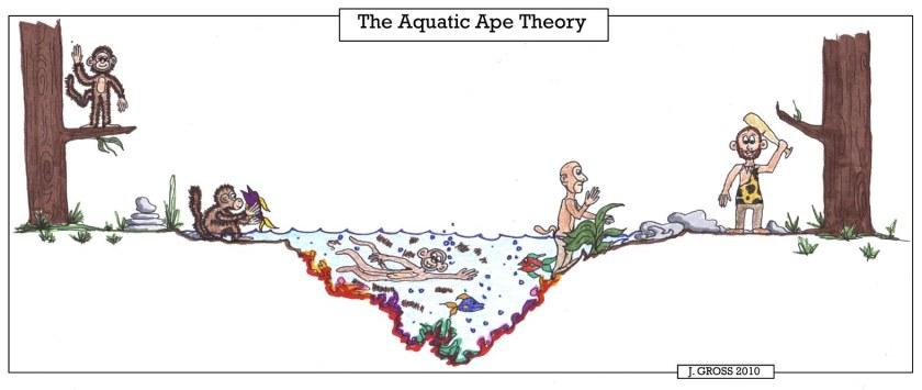 Aquatic-Ape-Theory