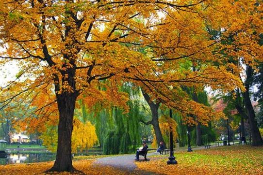 boston-in-the-fall-s2